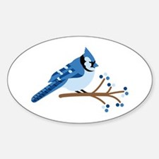 Christmas Blue Jays Decal