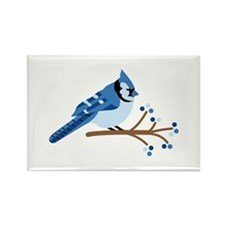 Christmas Blue Jays Magnets