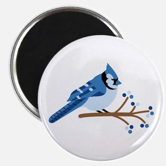 Christmas Blue Jays Magnets