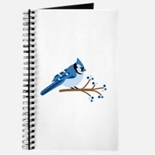 Christmas Blue Jays Journal