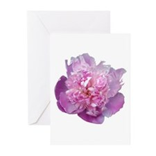 Pink Flower Greeting Cards