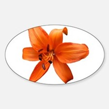 Orange Lilly Decal