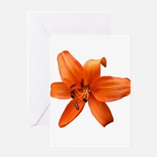 Orange Lilly Greeting Cards