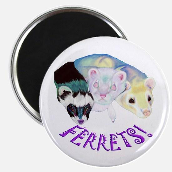 Ferrets Too! Magnet