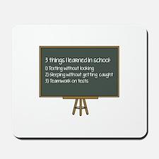 3 Things I Learned In School Mousepad