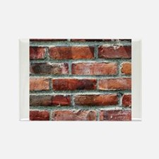 Brick Wall 1 Magnets