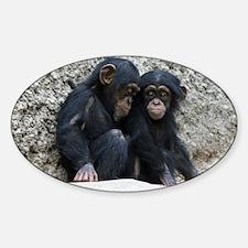 Chimpanzee002 Decal