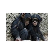Chimpanzee002 Rectangle Magnet
