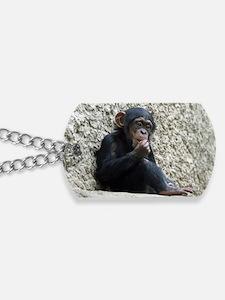 Chimpanzee003 Dog Tags