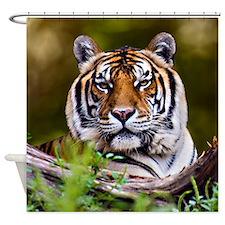 SHOWER CURTAIN Tiger