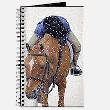 Snowy Winter Pony Journal
