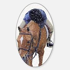 Snowy Winter Pony Decal
