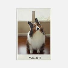 Whatt?? Rectangle Magnet (100 pack)