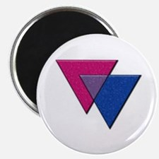 Triangles Symbol - Bisexual Pride Flag Magnets