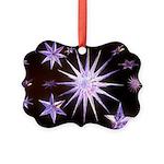 Sparkling Stars Picture Ornament