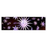 Sparkling Stars Sticker (Bumper 50 pk)