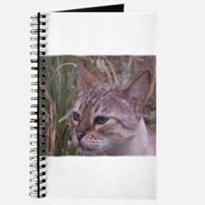 Unique Cat paintings Journal