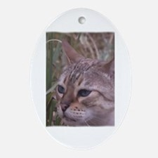 Unique Tabby cat Oval Ornament