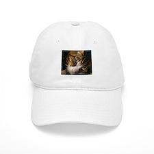 Unique Cats curled up Baseball Cap