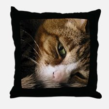 Funny Cats curled up Throw Pillow