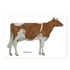 Golden Guernsey cow Postcards (Package of 8)