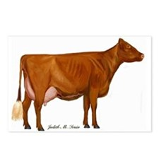 Shorthorn Cow Postcards (Package of 8)