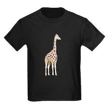 giraffe 2 T