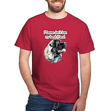 Mastiff fluffy BSL1 T-Shirt