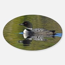 Loon reflection Decal