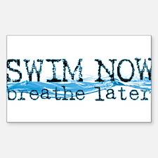swimnowb.jpg Decal