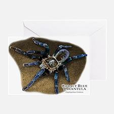 Cobalt Blue Tarantula Greeting Card