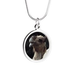 Happy Camel Necklaces