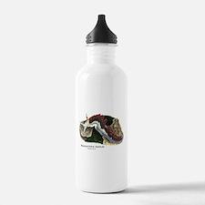 Pugnacious Aeolid Water Bottle