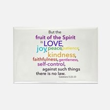 Fruits of the Spirit Rectangle Magnet