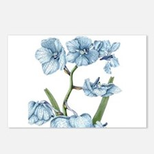 Orchid Postcards (Package Of 8)