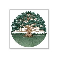 "The Wisdom Tree Square Sticker 3"" x 3"""
