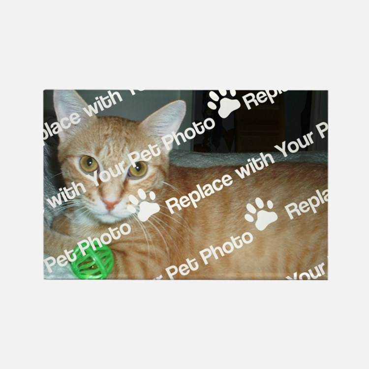 CUSTOMIZE With Your Pet Photo Magnets