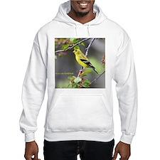 American Goldfinch Hoodie