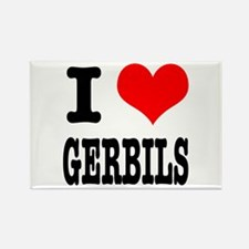 I Heart (Love) Gerbils Rectangle Magnet