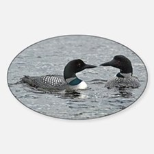 2 Loons Decal