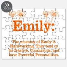 The Meaning of Emily Puzzle