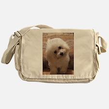 Gohan Messenger Bag