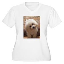 Gohan Plus Size T-Shirt