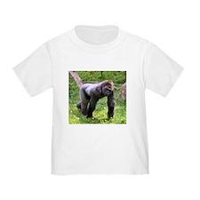100_0570 T-Shirt