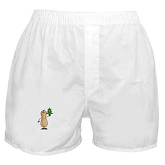 Pine Nut Boxer Shorts