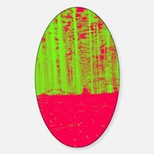 Abstract neon green hot pink pine f Sticker (Oval)
