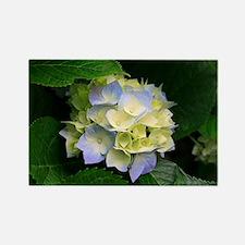 la fleure Rectangle Magnet