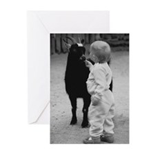 Goat Feeder Greeting Cards (6)
