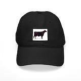 Beef Black Hat