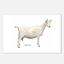 Saanen Dairy Goat Postcards (Package of 8)